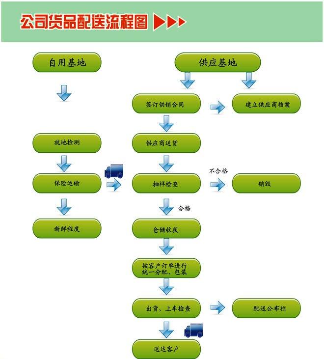 蔬菜生长步骤图